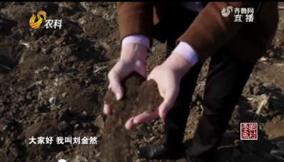 """【田园追梦人】""""煤老板""""改行做有机农业"""