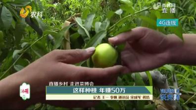 【直播乡村 走进菜博会】:这样种桃 年赚50万