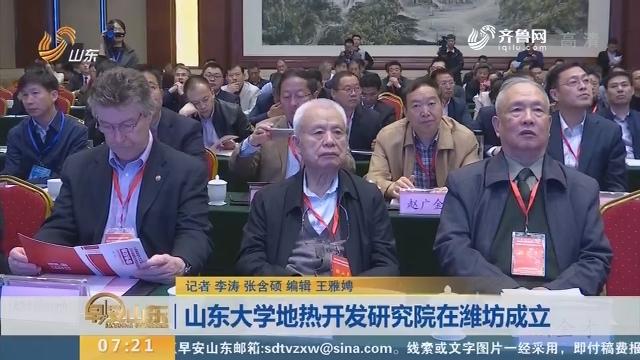 山东大学地热开发研究院在潍坊成立