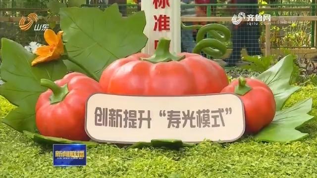"""【记者观察】菜博会上的""""寿光模式"""""""