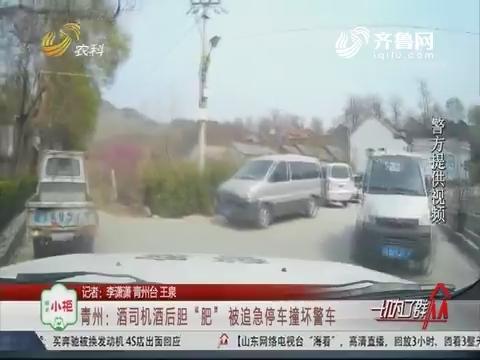 """青州:酒司机酒后胆""""肥"""" 被追急停车撞坏警车"""