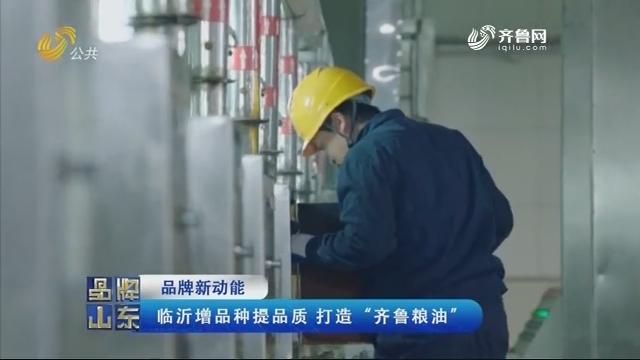 """【品牌新动能】临沂增品种提品质 打造""""齐鲁粮油"""""""