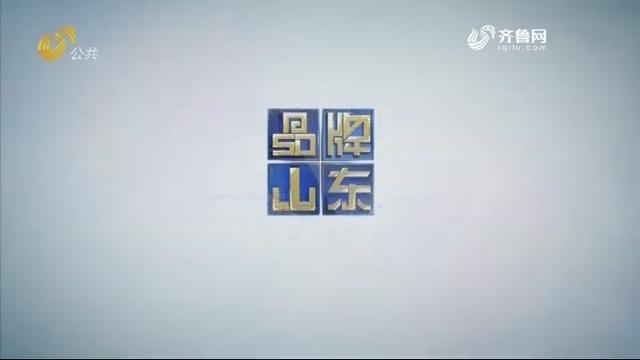 2019年04月21日《品牌山东》完整版
