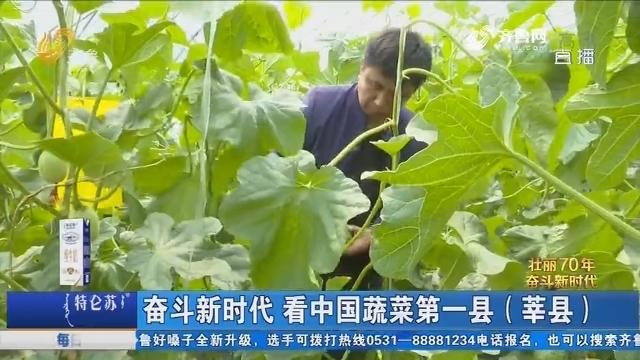 奋斗新时代 看中国蔬菜第一县(莘县)