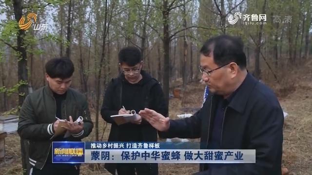 【推动乡村振兴 打造齐鲁样板】蒙阴:保护中华蜜蜂 做大甜蜜产业