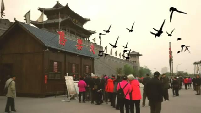 省台老干部赴菏泽郓城水浒城参观游览