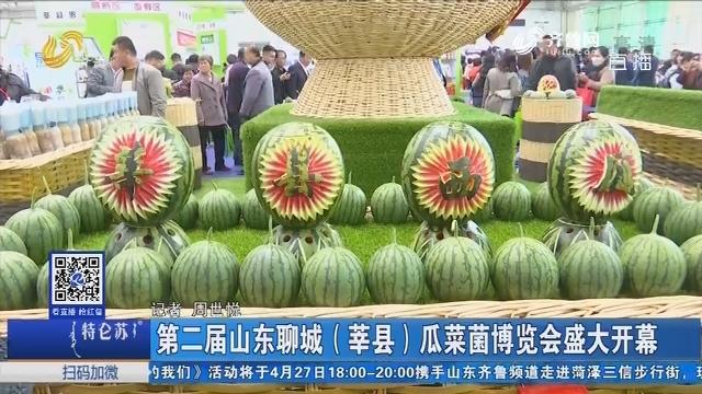 第二届山东聊城(莘县)瓜菜菌博览会盛大开幕