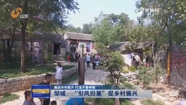 """【推动乡村振兴 打造齐鲁样板】邹城:""""引凤归巢""""促乡村振兴"""
