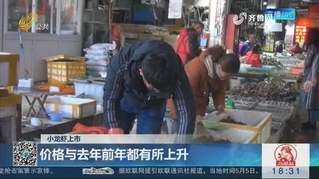 【小龙虾上市】济南:价格与去年前年都有所上升