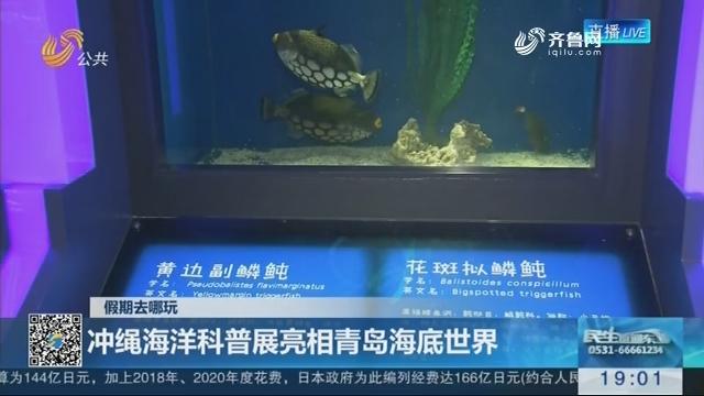 【假期去哪玩】冲绳海洋科普展亮相青岛海底世界