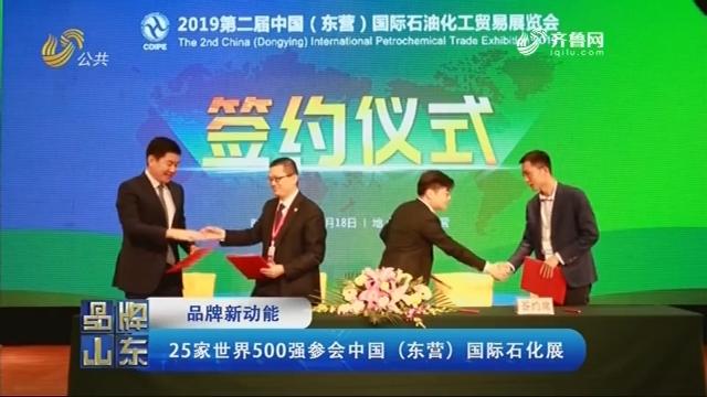 【品牌新动能】25家世界500强参会中国(东营)国际石化展