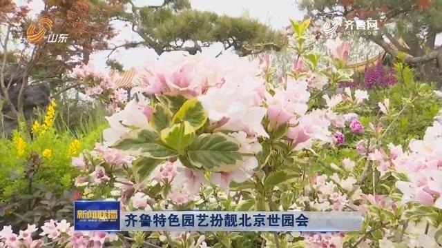 齐鲁特色园艺扮靓北京世园会