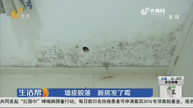 潍坊:墙皮脱落 新房发了霉