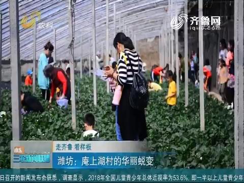 【走齐鲁 看样板】潍坊:庵上湖村的华丽蜕变