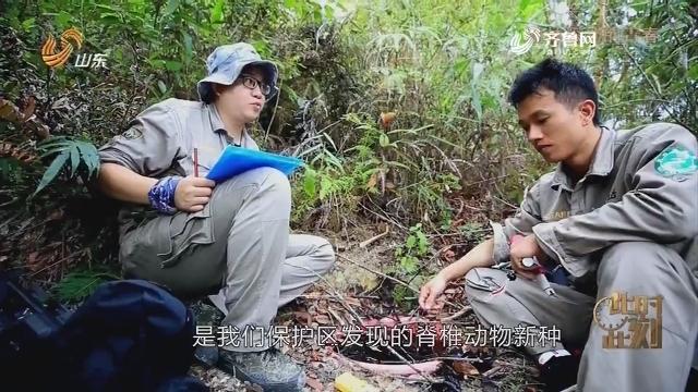 20190429《此时此刻》:雨林深处的青春