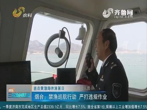 【直击黄渤海休渔首日】烟台:禁渔巡航行动 严打违规作业