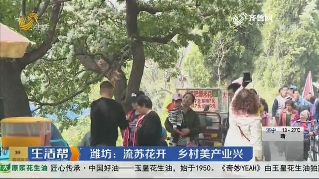 潍坊:流苏花开 乡村美产业兴