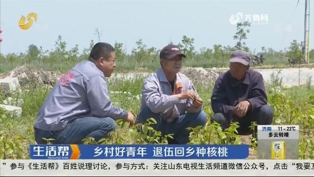 潍坊:乡村好青年 退伍回乡种核桃