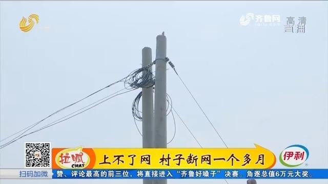 齐河:上不了网 村子断网一个多月