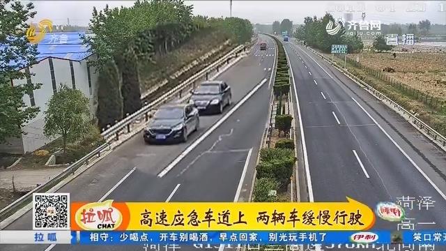 菏泽:高速应急车道上 两辆车缓慢行驶