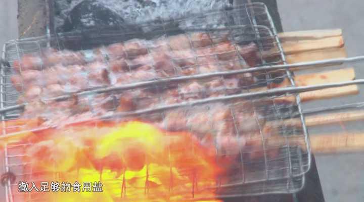 《生活大求真》:户外烧烤一定要带这种调味料,它能救火!
