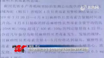 《问安齐鲁》05-11播出:《多人食用海虹中毒 秦皇岛市政府发布禁捕禁售海虹通告》