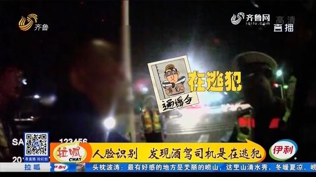 淄博:人脸识别 发现酒驾司机是在逃犯