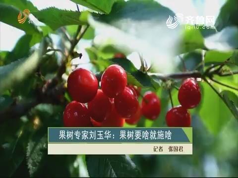 果树专家刘玉华:果树要啥就施啥