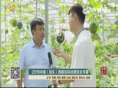 【直播乡村】2019中国(昌乐)西甜瓜科技博览会开幕
