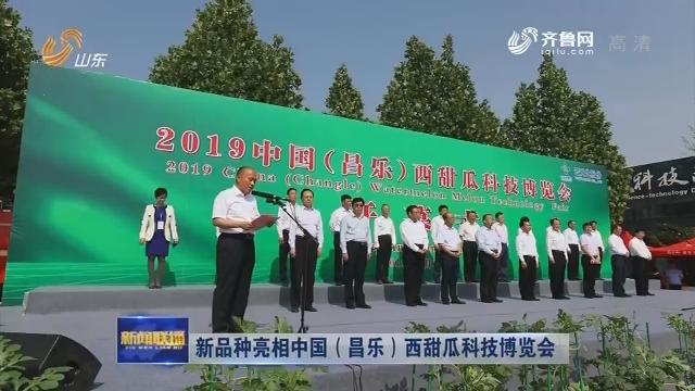 新品种亮相中国(昌乐)西甜瓜科技博览会