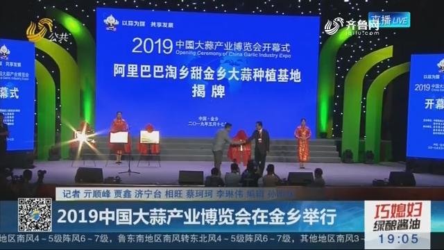 2019中国大蒜产业博览会在金乡举行
