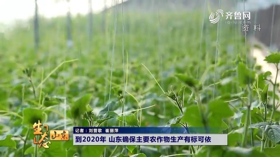 到2020年 山东确保主要农作物生产有标可依