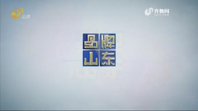 2019年05月19日《品牌山东》完整版