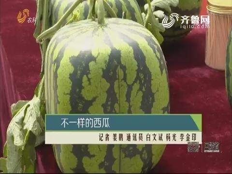 不一样的西瓜