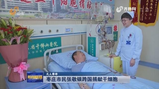【凡人善举】枣庄市民张敬银跨国捐献干细胞