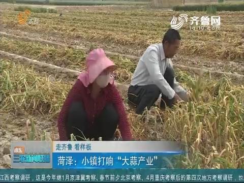 """【走齐鲁 看样板】菏泽:小镇打响""""大蒜产业"""""""