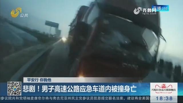 【平安行 你我他】悲剧!男子高速公路应急车道内被撞身亡