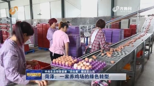 """【中央生态环保督察""""回头看""""整改在山东】菏泽:一家养鸡场的绿色转型"""