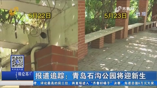 报道追踪:青岛石沟公园将迎新生