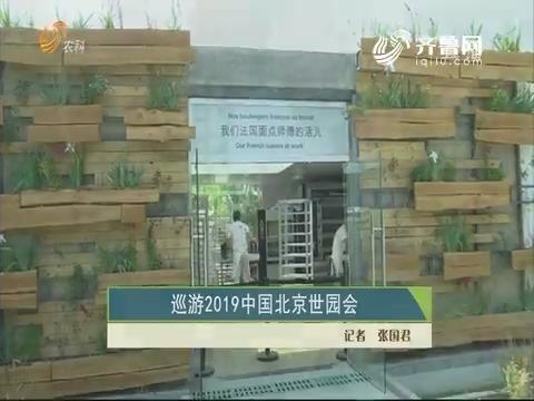 巡游2019中国北京世园会