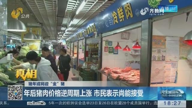 """【真相】猪年或将迎""""金""""猪:年后猪肉价格逆周期上涨 市民表示尚能接受"""