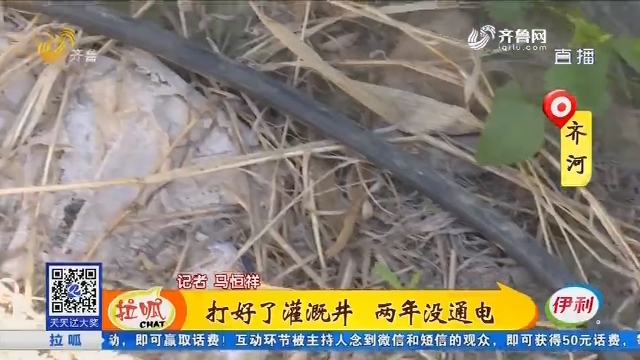 齐河:打好了灌溉井 两年没通电
