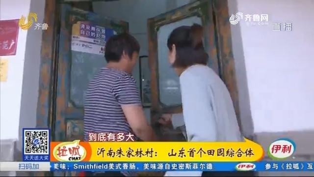 【齐鲁最美乡村】沂南朱家林村:山东首个田园综合体