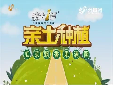 2019年05月27日《亲土种植·瓜菜飘香果满园》完整版