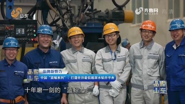 """【品牌新势力】中国""""蓝鲸系列"""":打造世界最强超深水钻井平台"""