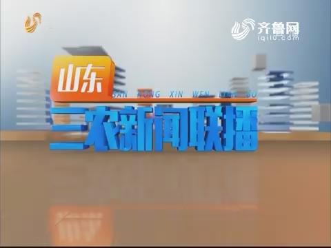 2019年05月28日山东三农新闻联播完整版