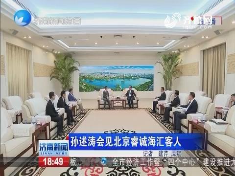 孙述涛会见北京睿城海汇客人