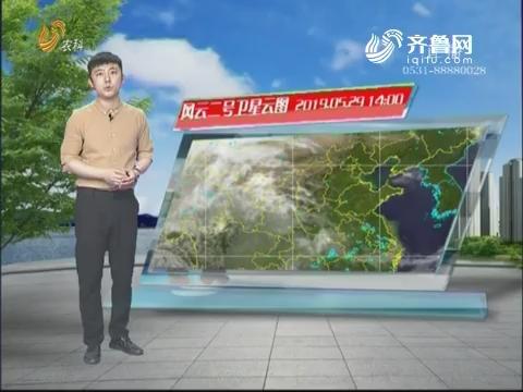 看天气:未来三天山东省气温上升 周末部分地区达到35°C