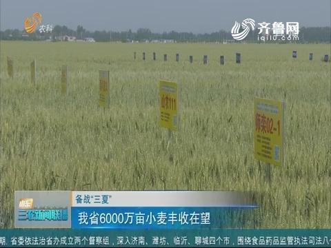 """【备战""""三夏""""】山东省6000万亩小麦丰收在望"""