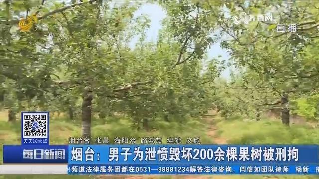 烟台:男子为泄愤毁坏200余棵果树被刑拘
